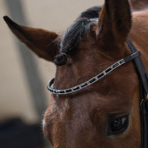 Equetech Drop Browband - Black/White Crystal